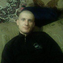 Алексей, 40 лет, Шпола