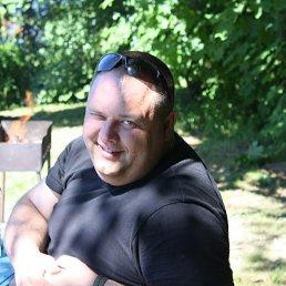 Александр, 41 год, Гусев