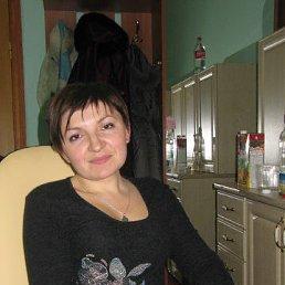 Оля, 42 года, Конотоп