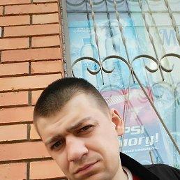 Сергей, 30 лет, Брянка