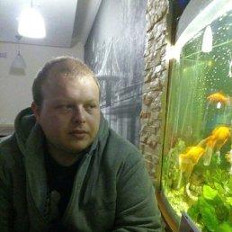 Олег, 27 лет, Корсунь-Шевченковский