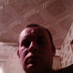 Сергей, 38 лет, Пошехонье