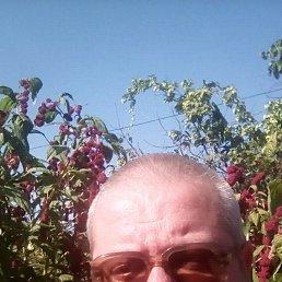 Анатолий, 47 лет, Могилев-Подольский