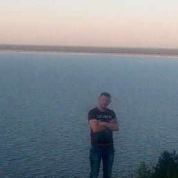 Анатолій, 27 лет, Теофиполь
