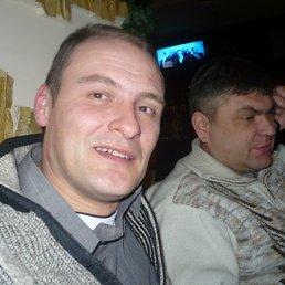 Фото Шеф, Ставрополь, 48 лет - добавлено 16 мая 2011