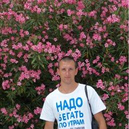 Александр, 33 года, Суходольск