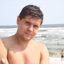Евгений, 44 года, Броды