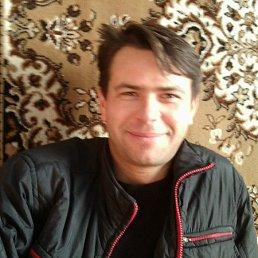 Юрий, 43 года, Веселиново