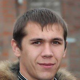 александр, 28 лет, Гигант