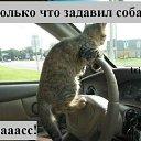 Фото Николай, Корюковка, 44 года - добавлено 12 января 2012