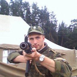 Денис, 33 года, Москва - фото 2