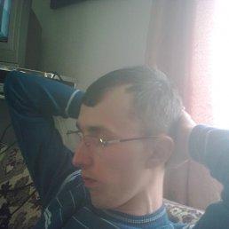 Андрй, 34 года, Рогатин