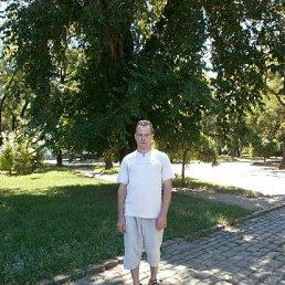Александр, 44 года, Ананьев