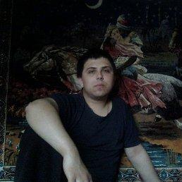 Сергей, 29 лет, Комсомольск