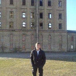 Дима, 26 лет, Нетешин