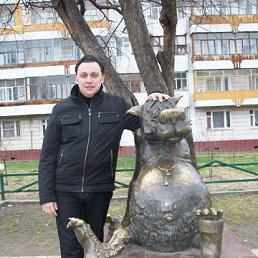 александр, 39 лет, Красногорское