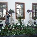Фото Инна, Лозовая, 56 лет - добавлено 21 сентября 2011 в альбом «Мои фотографии»