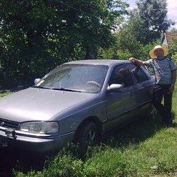 Фото Сергей, Котельва, 62 года - добавлено 7 ноября 2011