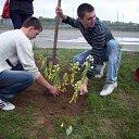 Фото Сергей, Иваново, 38 лет - добавлено 4 октября 2010