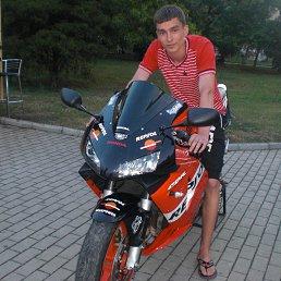 Виктор, 24 года, Селидово