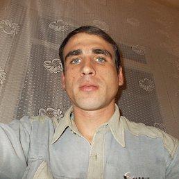 ВАДИМ, 32 года, Сольцы