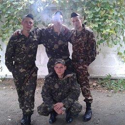 Серий, 28 лет, Кузнецовск
