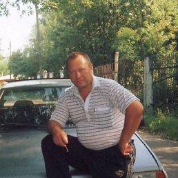Владимир, 60 лет, Михнево