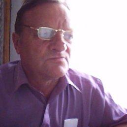 николай, 65 лет, Хорол
