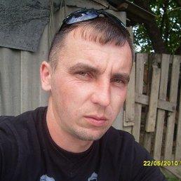 Михаил, 40 лет, Красногвардейское