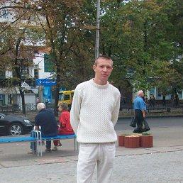 Діма, 33 года, Корсунь-Шевченковский