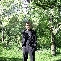 Роман, 36 лет, Ямполь