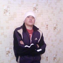 Тимоха, 28 лет, Кировск