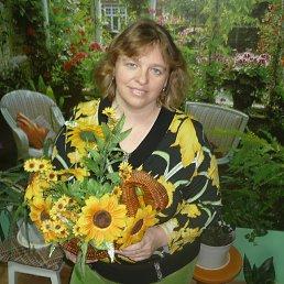 Диана, 44 года, Виноградов