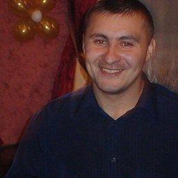 Роман, 39 лет, Сходня