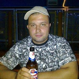 Александр, 39 лет, Кировск