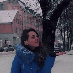 Карина, 22 года, Калининград