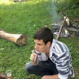 Серёга, 25 лет, Лохвица