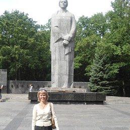 елена, 59 лет, Дружковка