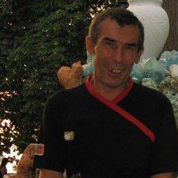 Владимир, 60 лет, Гребенки