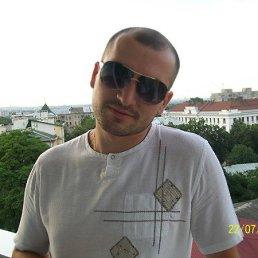 Дима, 36 лет, Яремче
