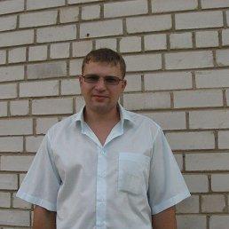 Андрей, 30 лет, Иваново