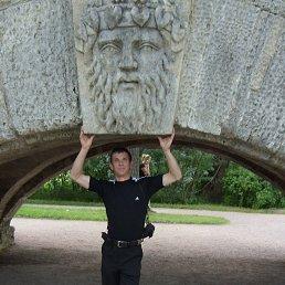 Аркадий, 42 года, Волгоград
