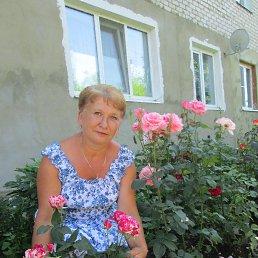 Надежда, 62 года, Шилово