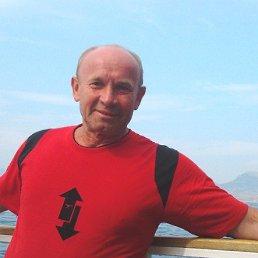 Николай, 63 года, Сосновый Бор