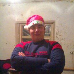 TOXA, 28 лет, Красноград