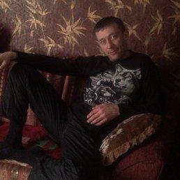 Алексей, 44 года, Суда