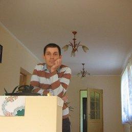 Альберт, 51 год, Тячев