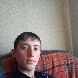 Владимир, 28 лет, Гай