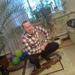 Сергей, 44 года, Городище