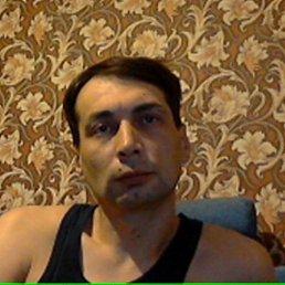 Анатолий, 45 лет, Родинское